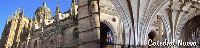 catedral-nueva