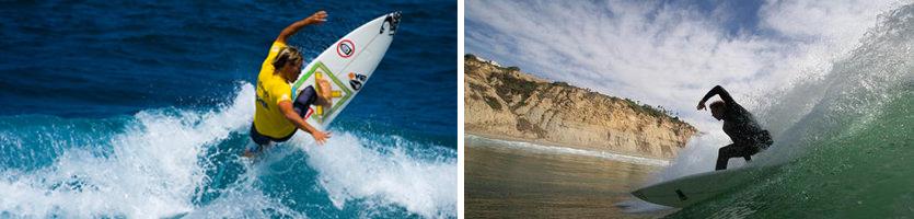 surfwordpress